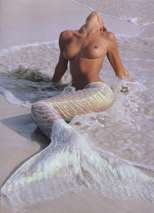 Stephanie Seymour; Babe Big Tits Brunette Celebrity Funny Hot