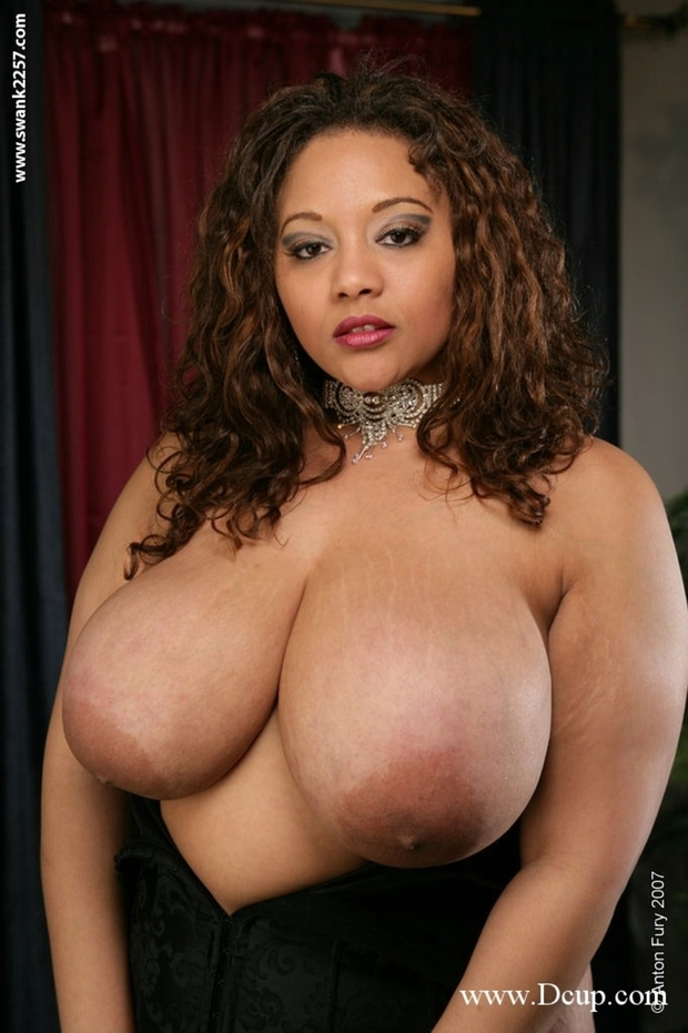 Big tit ebony bbw remarkable