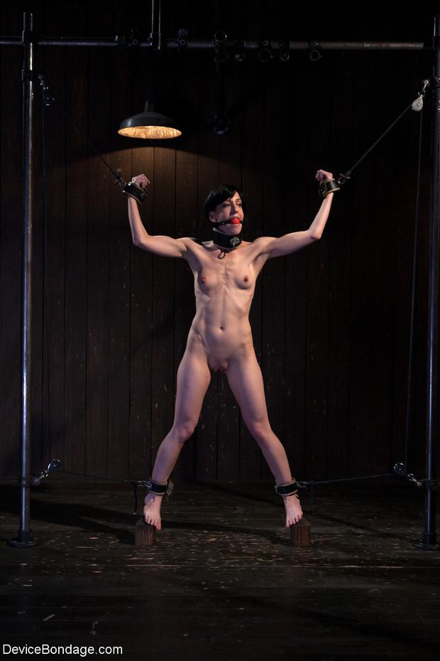 ...; BDSM Bondage Petite